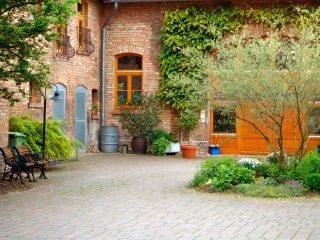 Garten Landschaftsbau Peine